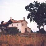 Tavistock Farms - Farmhouse - August 1998